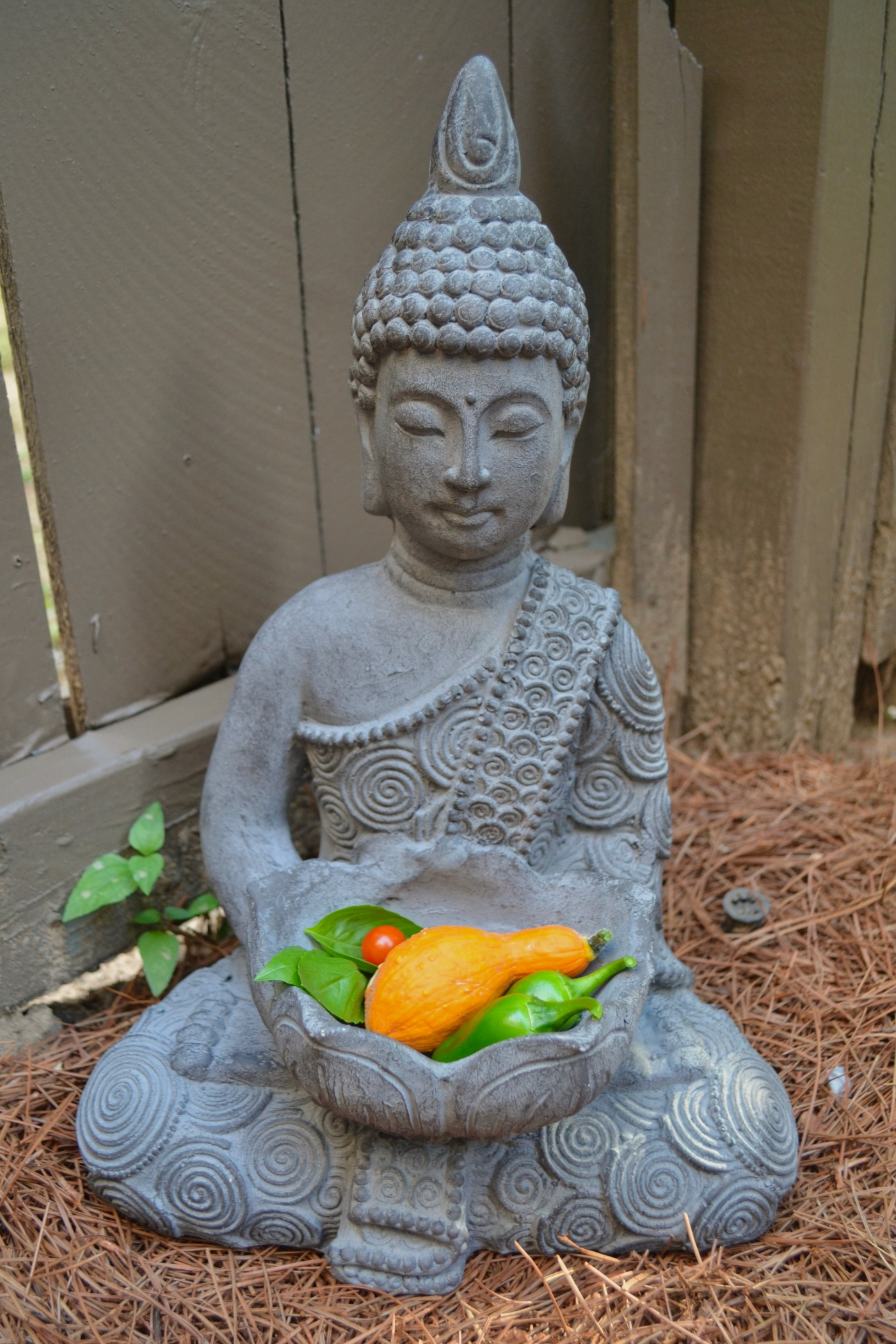 garden-buddha